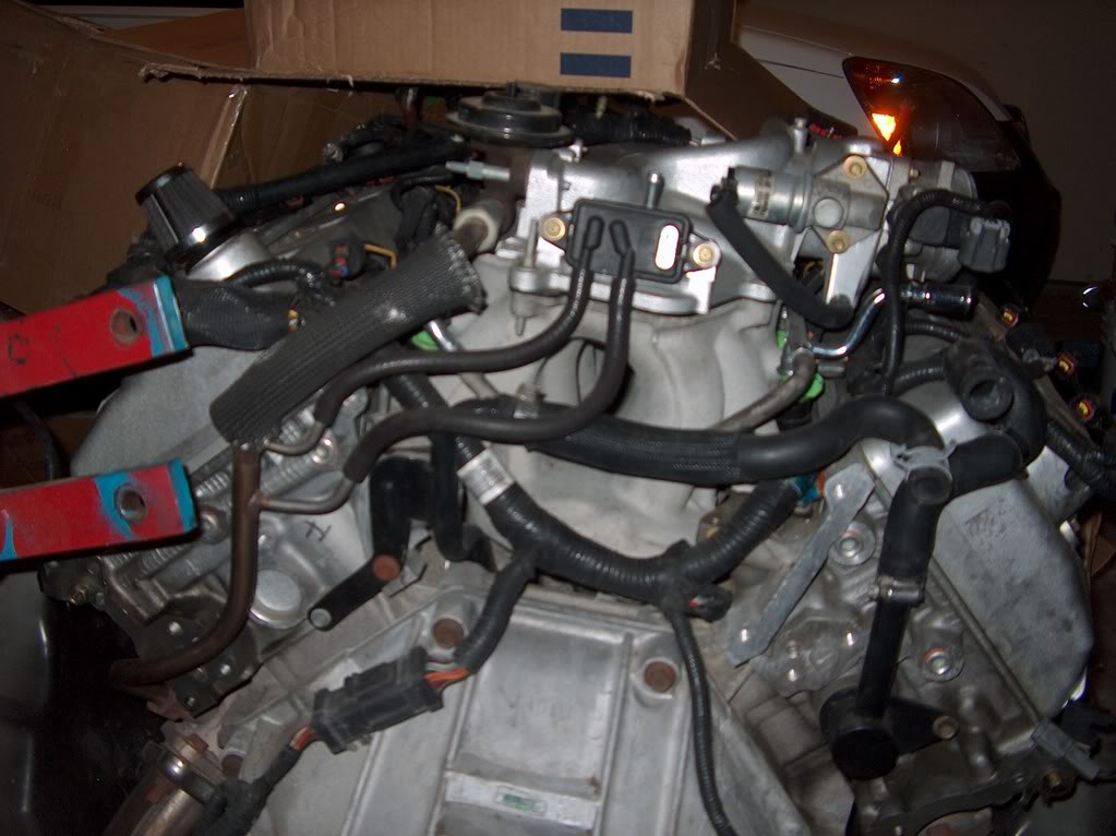 Cobrarear as well Pict Vi in addition Wiring Bdiagram Bford Bmustang B moreover Maxresdefault On Msd Pn Wiring Diagram further C D C. on ford ranger engine wiring harness