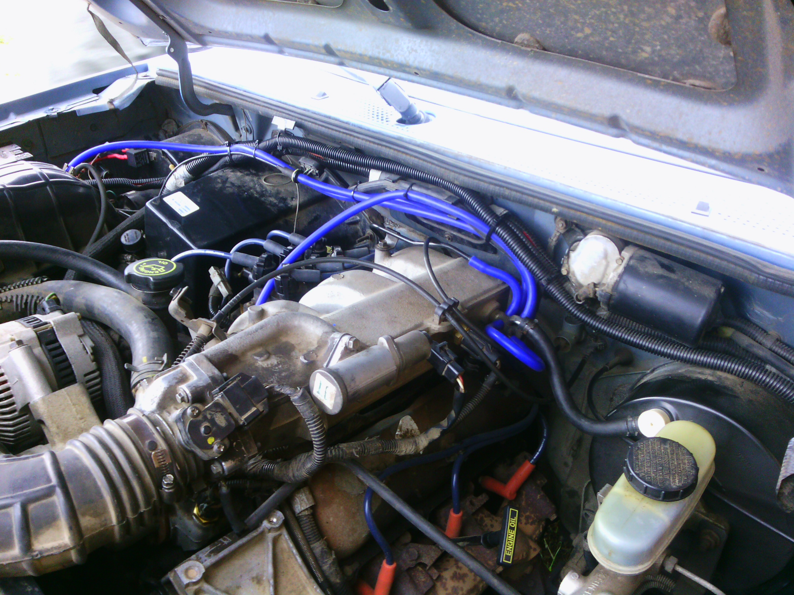 91 Ford Ranger 4 0 Engine Diagram Trusted Wiring Diagrams 1994 Explorer V6 Comprehensive U2022 Rh Alldayviral Com